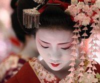 Top 11 điều thú vị về nàng Geisha của Nhật Bản