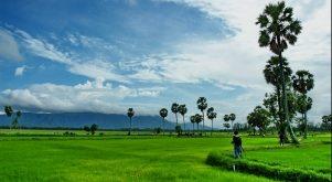 Top 7 địa điểm hấp dẫn du khách của vùng đất An Giang